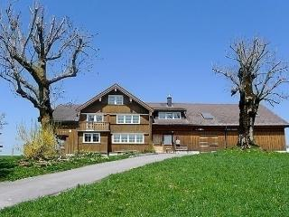 Cozy Condo with Short Breaks Allowed and Long Term Rentals Allowed - Appenzell vacation rentals