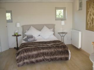 Private bedroom in equestrian farmhouse - Sommieres vacation rentals