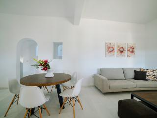 4 bedroom Villa with Internet Access in Naoussa - Naoussa vacation rentals