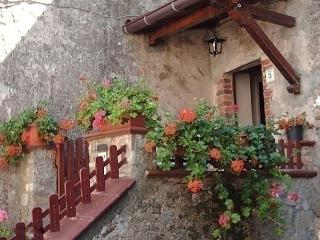 Nice Condo with Short Breaks Allowed and Long Term Rentals Allowed - Fabbriche di Vallico vacation rentals