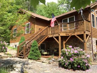 HAWKSNEST CABIN, peaceful Blue ridge getaway - Burnsville vacation rentals