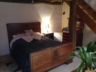 Chambre d'hôte en bord de Saône - Port-sur-Saone vacation rentals