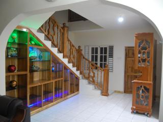 Perfect Villa with Internet Access and A/C - Kildare vacation rentals