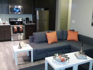 Beautiful Apartment at Medical Center - Houston vacation rentals