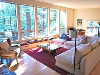 Big Trees Premium Mountain Retreat - Arnold vacation rentals
