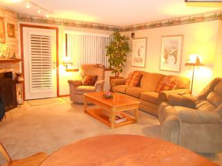 Two Beautiful Giant Steps Condo - Brian Head vacation rentals