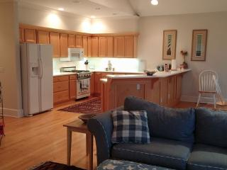 Two Bedroom Condo in Downtown Harbor Springs, MI - Harbor Springs vacation rentals