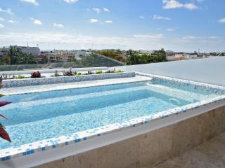 Ocean View Studio Apartment with Private Pool - Playa del Carmen vacation rentals