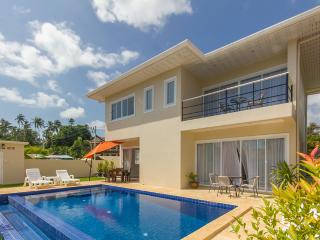 Nice villa for 6,  very good price - Maret vacation rentals