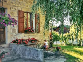 Traditional house with a terrace - Mont-sous-Vaudrey vacation rentals