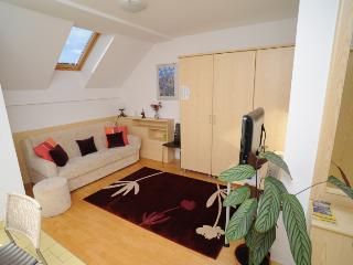 Cozy 1 bedroom Moravske Toplice Apartment with Internet Access - Moravske Toplice vacation rentals