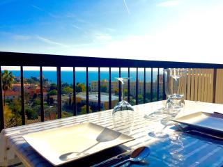 Panoramic sea-view apartment in Beaulieu center - Beaulieu vacation rentals