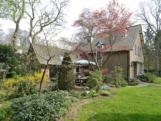 Luxury family villa in beautiful surroundings - Hilversum vacation rentals
