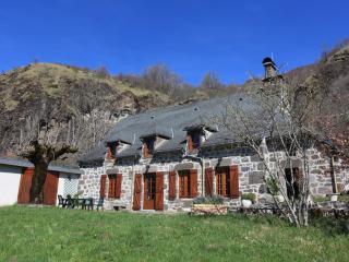 Le Domaine de Nerestant - 4 étoiles - Le Falgoux vacation rentals