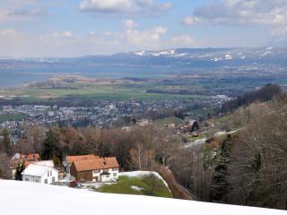 Helle Ferienwohnung mit Blick auf Bodensee - Wolfhalden vacation rentals