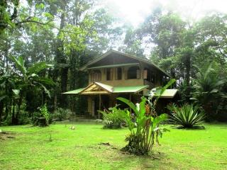 Jungle & Beach in Cocles, Puerto Viejo - Cocles vacation rentals