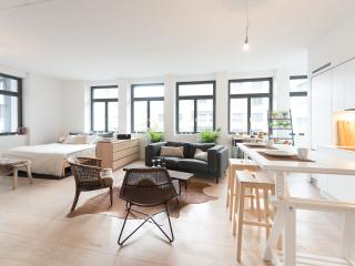Spacious studio near Zurich city center - Zurich vacation rentals