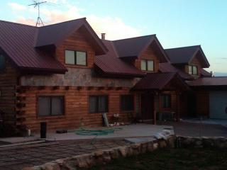 Luxurious Mountain Log Home - Dolores vacation rentals