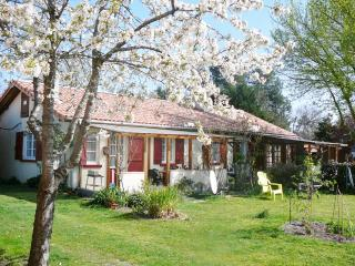 Nice Gite with Internet Access and Central Heating - Parentis-en-Born vacation rentals