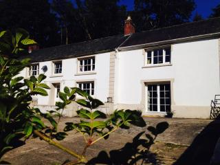 Perfect House with Internet Access and Wireless Internet - Llanybydder vacation rentals