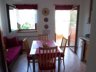 Beautiful Condo with Television and Central Heating - Banjole vacation rentals