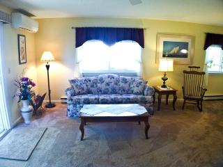Ocean Edge: Patio home with golf views and pool access - SU0080 - Brewster vacation rentals
