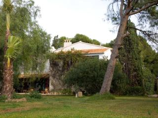 Luxury rural Spanish Finca in Alicante - Alicante vacation rentals