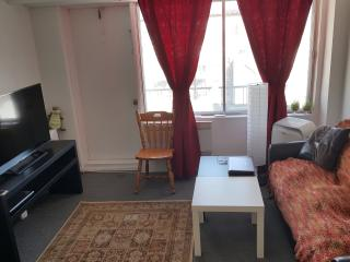 Sublet From April 23rd to March 22nd - Montreal vacation rentals