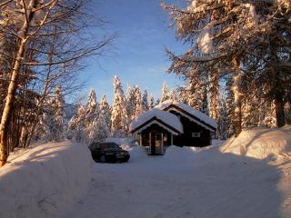 Lie  Hytte 2 Hans & Grethe Hytta - Dalen vacation rentals