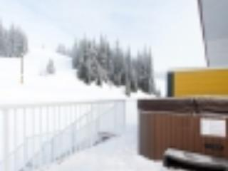 Newly renovated bright two bedroom (plus lofts) - Silver Star Mountain vacation rentals