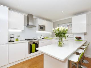 Stylish 3 Bed/3 Bath next to Park - London vacation rentals