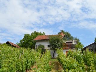Holiday Home in Sveti Urban, Strigova - Strigova vacation rentals