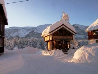 1 bedroom House with Internet Access in Dalen - Dalen vacation rentals