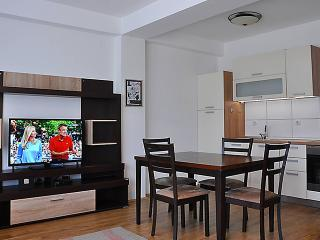 1 bedroom Condo with Internet Access in Gevgelija - Gevgelija vacation rentals