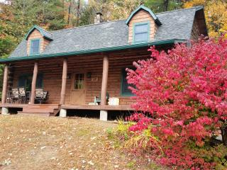Cozy Log House with Beautiful View - Diamond Point vacation rentals