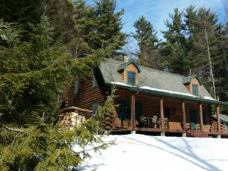 New Listing! Cozy Log House with Beautiful View - Diamond Point vacation rentals