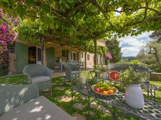 The Country House - Lucca vacation rentals
