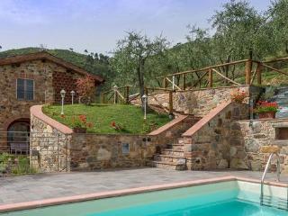 Rosolo - Lucca vacation rentals