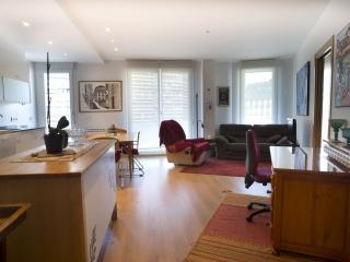 San Roque Center - Iberorent Apartments - San Sebastian - Donostia vacation rentals
