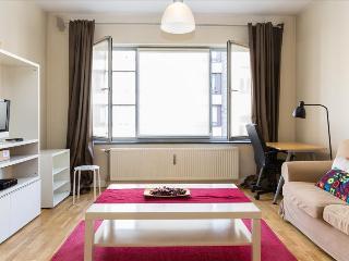 Comfortable 1 bedroom Condo in Ixelles - Ixelles vacation rentals