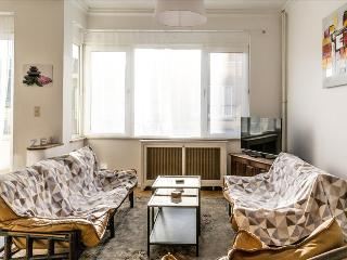 Bright 2bdr in the embassy district - Ixelles vacation rentals