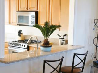 "Beachstreet Bluez ""The Ocean's Melody"" - Virginia Beach vacation rentals"
