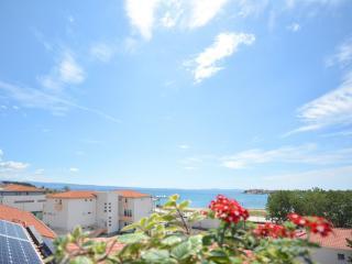 TH01660 Apartments Elza / One bedroom A4 CRVENI - Podstrana vacation rentals
