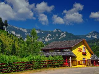 Nice Cottage with Satellite Or Cable TV and Parking - Bicaz vacation rentals