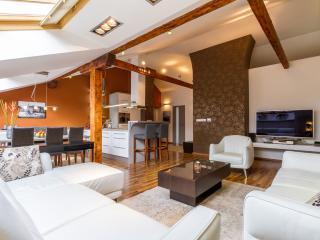 Exceptional XXL Luxury Suite 3xBRD 2xSauna Jacuzzi - Prague vacation rentals