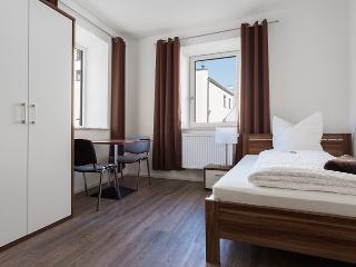 Modernes Apartment mit Küche und sky-TV - Neustadt a d Donau vacation rentals