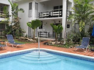 Palm Beach Condominium - beachfront - Holetown - Holetown vacation rentals