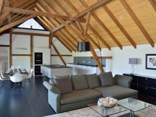 Rebenhaus-Loft im idyllischen Rebland - Baden-Baden vacation rentals