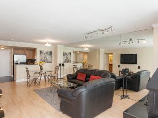 Luxury Condo in Downtown Denver - Denver vacation rentals