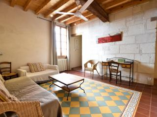 House Genive, typical house from Arles with terace - Arles vacation rentals